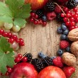 Thanksgiving fruit border — Stock Photo