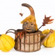 Autumn puppet — Stock Photo