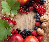 Thanksgiving fruit border — Stockfoto
