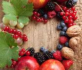 Thanksgiving fruit border — Stock Photo