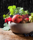 Raindrops on autumn fruits — Stock Photo