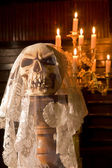 Death with a bridal veil — Stock Photo