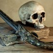 Old master skull — Stock Photo