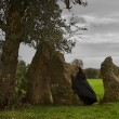 Stock Photo: Waiting for the druids