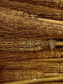 Halloween brooms — Stockfoto