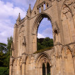 Stock Photo: Newstead Abbey Ruins