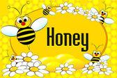 Etichetta vaso di miele o brochure — Vettoriale Stock