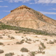 "Biosphere reserve ""Bardenas Reales"", Navarre (Spain) — Stock Photo"