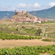 Royalty-Free Stock Photo: San Vicente de la Sonsierra, La Rioja, Spain