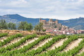San Vicente de la Sonsierra, La Rioja, Spain — Stock Photo