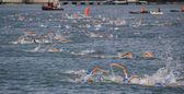 Valencia Port Swim — Stock Photo