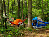 Camping In The Woods — Stock Photo