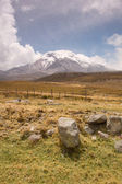 Chimborazo mountain — Stock Photo