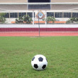������, ������: Perspective of penalty spot of soccer field