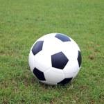 Soccer ball on green grass — Stock Photo #11533224