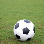 Soccer ball on green grass — Stock Photo #11533238