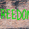 Freedom word on the wall — Stock Photo