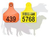 Ear Tags & Farm Animals Silhouette — Stock Vector