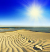 Footprints on the beach — Stock Photo