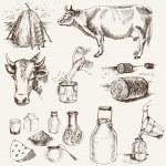 ko-och mjölkprodukter — Stockvektor