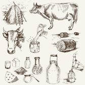 Cow and milk products — Vetor de Stock