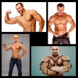 Stock Photo: Muscular male composition