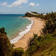 Stock Photo: Beautiful Sunny Tropical CaribbeBeach Landscape Carlisle Bluf