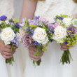 Wedding bouquets held by bridesmaids — Stock Photo #11438115