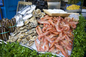 Oysters and prawns for sale — Stock Photo