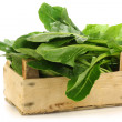 Chinese spinach (Ipomoea aquatica) in a wooden crate — Stock Photo