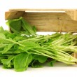 Stock Photo: Fresh turnip tops (turnip greens) in wooden crate
