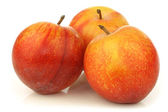 Red and yellow plums — Foto Stock