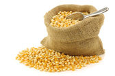 Yellow corn grain in a burlap bag with an aluminum scoop — Stock Photo