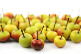 Fruits of the Malus Pumila (crabapple) — Stock Photo