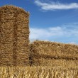 Bales of straw — Stock Photo