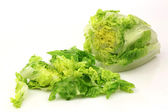 Cut lettuce — Stock Photo