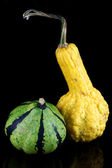 A yellow and a green striped ornamental pumpkin — Photo