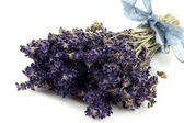 Bundle of dried lavender with a blue ribbon — Stock Photo