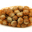 Bunch of fresh hazelnuts in plastic net — Stock Photo #11910763