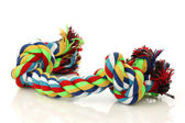 Colorful cotton dog toy — Stock Photo
