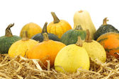 Colorful pumpkins on straw — Stock Photo