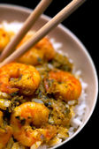 Curry Prawns with Rice - Macro and Black background 02 — Stock Photo