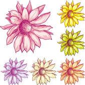 Flowers elements — Stock Vector
