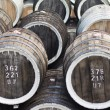 Stock Photo: Barrels of wine