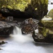 Stock Photo: Cascade falls over mossy rocks