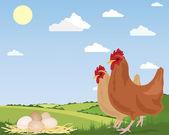 Free range eggs — Stock Vector