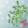 Mistletoe — Stock Vector