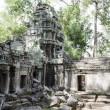 Royalty-Free Stock Photo: Ta Prohm