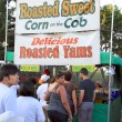 Roastd Corn Cobs Stand — Stock Photo