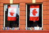 Canadian Literature — Stock Photo